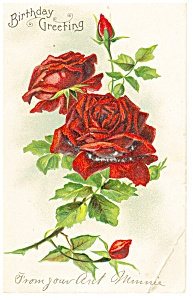 Birthday Greeting Postcard P12509 Roses