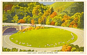 Great Smokey National Park TN Loop Over Postcard p1254 (Image1)