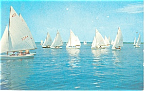 Sailboats Ready for the Race Postcard p12580 1984 (Image1)