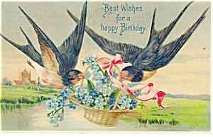 Birthday Postcard p12695 Barn Swallows ca 1907 (Image1)
