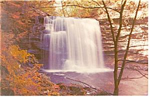 Harrison Wright Falls PA Postcard p12703 (Image1)