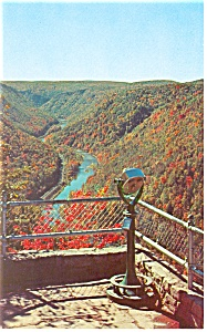 Fall View at Pennsylvania Grand Canyon Postcard p12753 (Image1)