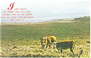 I wish above all things that you may prosper Postcard p12774 (Image1)