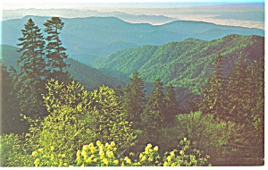 Great Smoky Mountains National Park, TN Postcard (Image1)