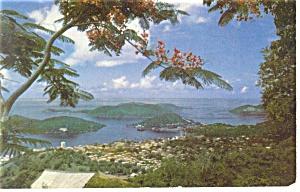 Charlotte Amalie US Virgin Islands Postcard p12861 (Image1)