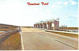 Tamiami Trail Florida Postcard p12953 1967 (Image1)