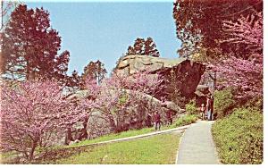Gettysburg PA Devil s Den Ledge Postcard p13081 (Image1)