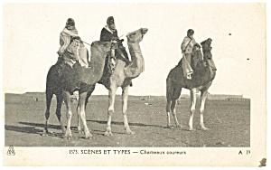 Camel Scene et Types Chameaux Coureurs Postcard p13216 (Image1)