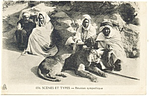 Lion with Desert Dwellers Postcard p13217 (Image1)