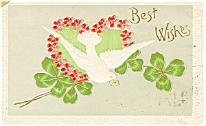 Best Wishes Postcard Dove Four Leaf Clover (Image1)