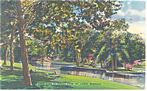 St Louis MO Duck Lake Forest Park Postcard p13274 (Image1)