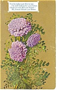 Please Write Postcard p13312 Flowers 1909 (Image1)