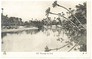 Paysage du Sud Morocco Postcard p13373 (Image1)
