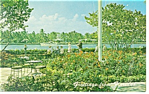 Patricia Murphy s Restaurant Florida Postcard p13384 (Image1)