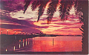 Sunset over Clearwater Bay Florida  Postcard p13438 1959 (Image1)
