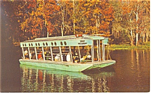 Glass Bottom Boat at Silver Springs FL Postcard p13493 (Image1)