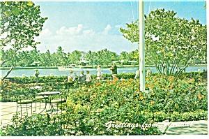 Fort Lauderdale FL  Patricia Murphy s Restaurant Postcard p13495 (Image1)