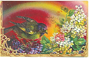 Birthday Greetings Blackbird Postcard (Image1)