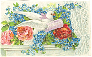 Birthday Greetings Dove Postcard ca 1909 (Image1)