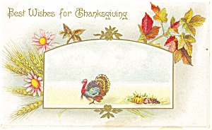 Best Wishes for Thanksgiving Postcard p13593 (Image1)