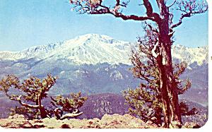 Pikes Peak  CO Postcard p13728 (Image1)