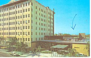 Suwannee Hotel St Petersburg FL Postcard p13761 1966 (Image1)