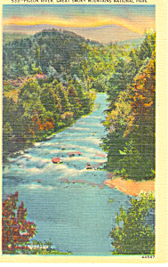 Pigeon River Great Smoky Mountains National Park Postcard p13868 (Image1)