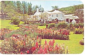 Southampton,Bermuda Waterlot Inn Postcard 1953 p14282 (Image1)