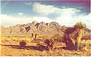 Beautiful Organ Mountain, New Mexico Postcard 1963 (Image1)