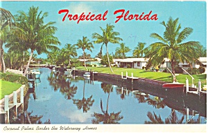 Palms Border the Waterway Homes FL Postcard p14621 1973 (Image1)