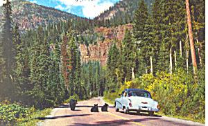 Bear Glacier National Park  Postcard p14690 (Image1)