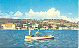 La Parguera Lajas Puerto Rico Postcard p14774 (Image1)