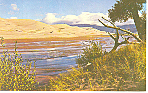 Great Sand Dunes National Monument CO Postcard p14881 (Image1)