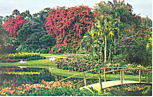 Cypress Gardens,FL, Flowers, Girls Postcard (Image1)