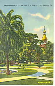 University Of Tampa Tampa FL Postcard p14938 (Image1)