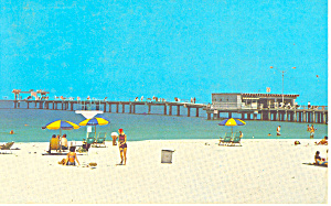 Clearwater FL Postcard p14971 (Image1)