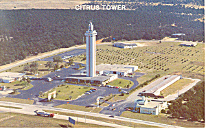 Citrus Tower Florida Postcard p14982 (Image1)