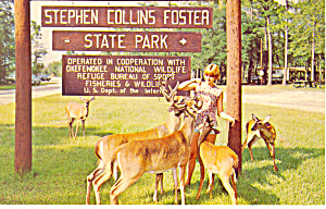 Stephen Collins Foster State Park GA Postcard p14986 (Image1)