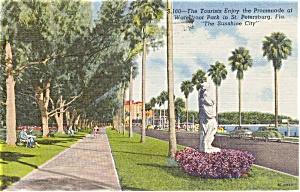 St Petersburg FL Waterfront Park Postcard p1499 (Image1)