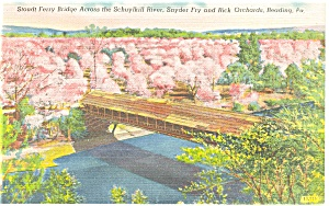 Reading, PA Stoudt Ferry Covered Bridge Postcard (Image1)