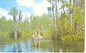 Okefenokee Swamp Park GA Postcard p15058 (Image1)