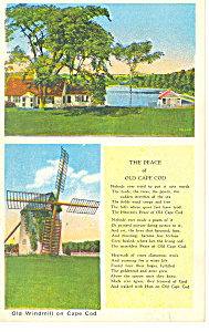 Old Windmill Cape Cod, MA Postcard (Image1)