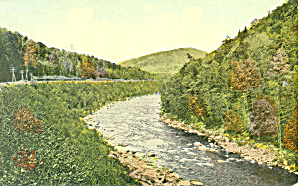 Tree Lined Rocky Stream, Scenic Postcard