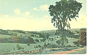 Home In Meadow, Scenic Postcard