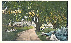 Picnicking,Belle isle,Detroit MI Postcard (Image1)