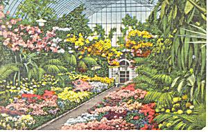 Shaws Gardens,St Louis, MO Postcard 1940 (Image1)