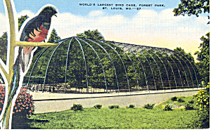 Forest Park St Louis MO Postcard p15458 (Image1)