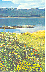 Beautiful Hebgen Lake Montana Postcard p15506 (Image1)