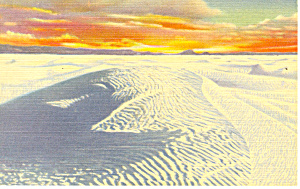 White Sands National Monument NM  Postcard p15672 (Image1)