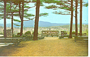 Altar of the Nation, Cathedral of the Pines ,NH Postcar (Image1)